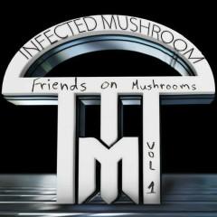 Friends On Mushrooms, Vol. 1