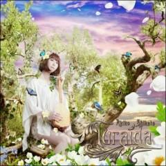Turaida Disc 2