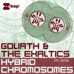 Hybrid Chromosomes - The Exaltics