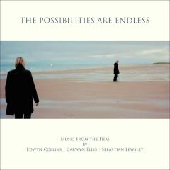 The Possibilities Are Endless OST  - Edwyn Collins,Carwyn Ellis,Sebastian Lewsley