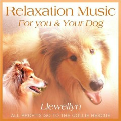 Relaxation Music For You And Your Dog
