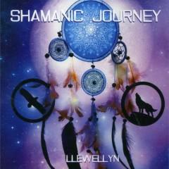 Shamanic Journey