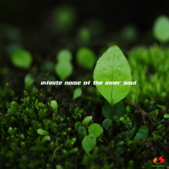 Infinite Noise of the Inner Soul - missingsoul