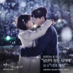 While You Were Sleeping OST Part.5 - BrotherSu, SE O