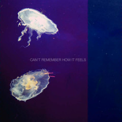 Can't Remember How It Feels (Single)