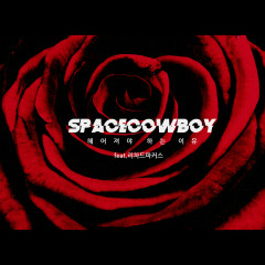 Reason To Partition (Single) - Space Cowboy