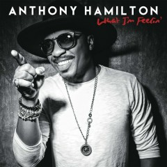 What I'm Feelin' - Anthony Hamilton