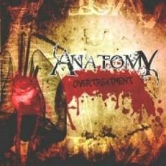 Overtreatment - Anatomy