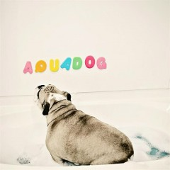 Aquadog