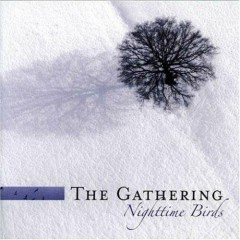 Nighttime Birds Reissue (CD3)
