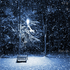Snow Flower (Single)