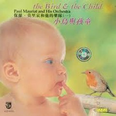 The Bird And The Child