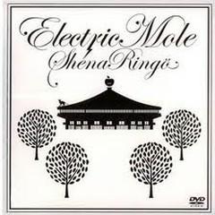 Electric Mole Part II