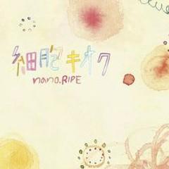 細胞キオク (Saibou Kioku) - nano.RIPE