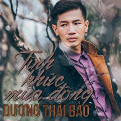 Tình Khúc Mùa Đông - Dương Thái Bảo