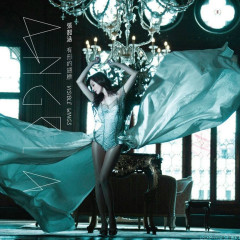 有形的翅膀 / Visible Wings - Trương Thiều Hàm