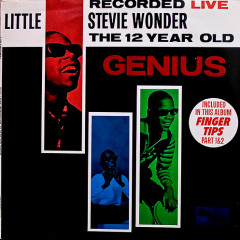The 12 Year Old Genius - Stevie Wonder