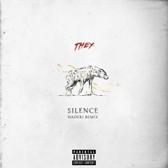 Silence (Naderi Remix) (Single)