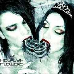 A Voluntary Coincidence (CD1) - Helalyn Flowers