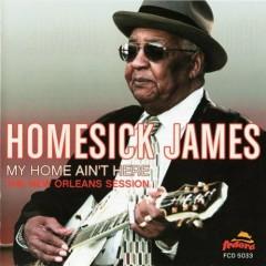 My Home Ain't Here - Homesick James