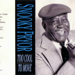Too Cool To Move - Snooky Pryor