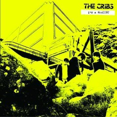 I'm A Realist - The Cribs