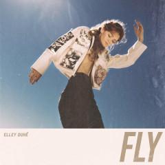 Fly (Single) - Elley Duhé
