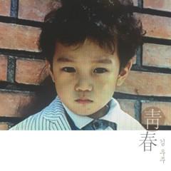 Cheongchun (청춘) - Kim Woo Joo
