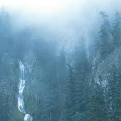 Diadem Of 12 Stars - Wolves In The Throne Room