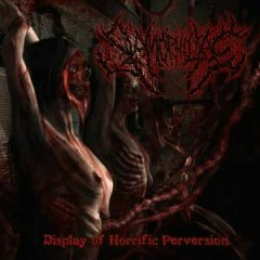 Display Of Horrific Perversion - Slamophiliac