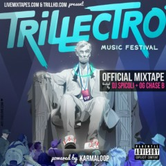 Trillectro Music Festival Mixtape (CD1)