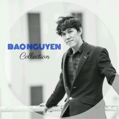 Bảo Nguyên Collection (Single)