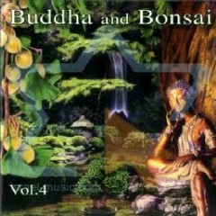Buddha And Bonsai Vol. 4 - Oliver Shanti,Various Artists