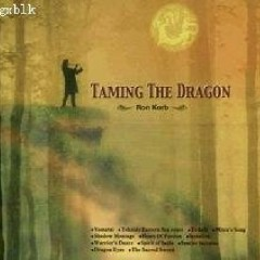 Taming The Dragon - Ron Korb