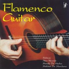 Masters Of Flamenco Guitar CD 1