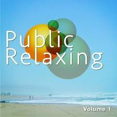 Public Relaxing Vol 1 Chill Out And Entspannung (No. 2)