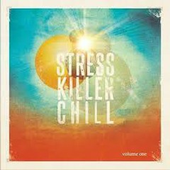 Stress Killer Chill 25 Anti Stress Lounge And Chill out Tunes For Relaxing Moments (No. 1)