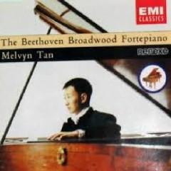 Beethoven - The Beethoven Broadwood Fortepiano (No. 2)