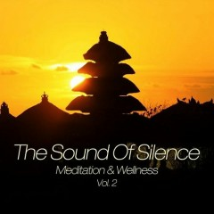 The Sound Of Silence Meditation And Wellness Vol 2 (No. 1)