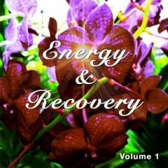 Energy And Recovery Vol 1 Peaceful Chill Out Yoga And Meditation Tunes (No. 2)