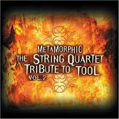 Anotomica The String Quartet Tribute To Tool CD 2