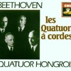 Beethoven - The Complete String Quartets; Grosse Fuge CD 1  - Hungarian Quartet