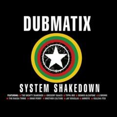 System Shakedown