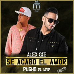 Se Acabo El Amor (Remix) (Single) - Alex Gie, Pusho