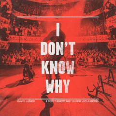 I Don't Know Why (Danny Avila Remix) (Single) - Gavin James