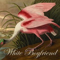White Boyfriend