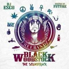 Black Woodstock Soundtrack (CD2)