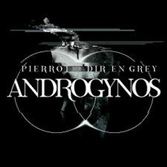 ANDROGYNOS CD1