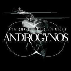 ANDROGYNOS CD2
