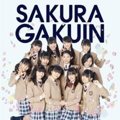 Sakura Gakuin 2013 Nendo ~Kizuna~ - Sakura Gakuin